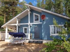Сосновый бор-2 каркасный дом