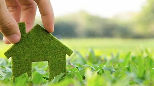 Экологичность каркасных домов